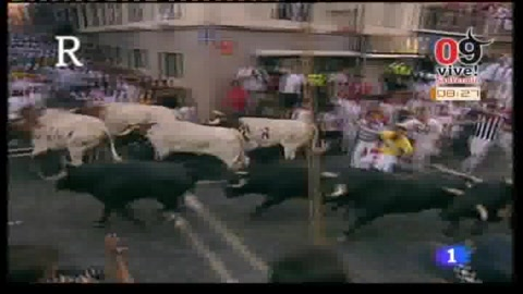 Encierro_2009_San_Fermin_Pamplona_Video_dia10.jpg